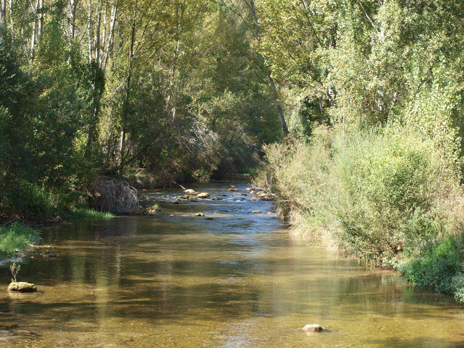Corredor fluvial del río Mijares en Olba