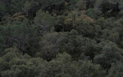 Poblaciones de la Sierra de Espadán