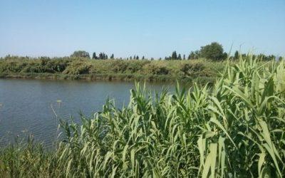 El Regadío de la Plana y el Paisaje Fluvial