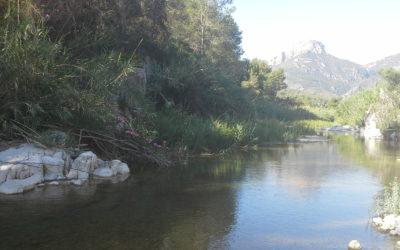 El Río Villahermosa, desde Argelita a Vallat