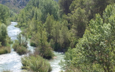 Parte Baja del Corredor del Río Cabriel