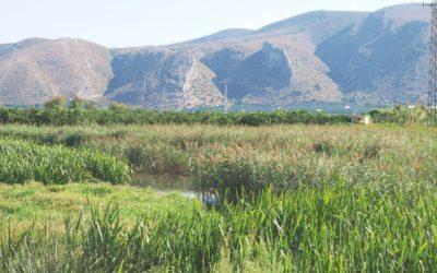 Paisajes del Sur de la Llanura Litoral Valenciana